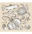 sea animals hand-drawn sketches fish trout vector image vector image