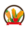 fresh vegetable product seal vector image