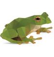Frog abstract vector image
