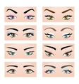 Set of female eyes and eyebrows vector image