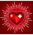 heart electrocardiogram vector image