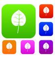 linden leaf set color collection vector image vector image