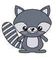 Raccoon kawaii cartoon design vector image vector image