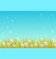 spring grass and flowers border on blue sky vector image vector image