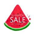 watermelon sale banner vector image vector image