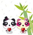 Panda couple vector image