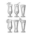 alcohol cocktail set vintage engraving vector image