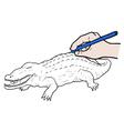 crocodile draw vector image vector image