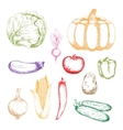 Farm vegetables retro sketch icons vector image