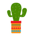 isolated cactus icon vector image vector image