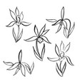 watercolor flowers hand drawing set with chinese vector image vector image