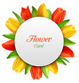 spring invitation with tulips flowers postcard vector image