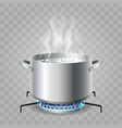 cooking boiling water vector image