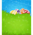 Eggs on a green meadow vector image vector image