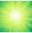 Green light background vector image vector image