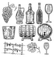 wine set wine bottles grape glass wood vector image