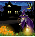 Witch near the house vector image