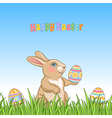 Easter grass bunny vector image