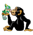 cartoon chimp holding a chameleon vector image vector image