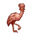 cartoon cute emu vector image vector image