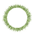circle frame with hand drawn green grass vector image vector image