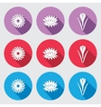 Flower icon set Chamomile daisy lily crocus vector image vector image