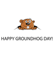 Groundhog peeking out of a hole vector image vector image