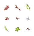 Herbs and spices icons cartoon vector image