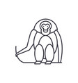 monkey line icon concept monkey linear vector image vector image