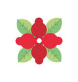 red flower leaves natural floral botanical icon vector image