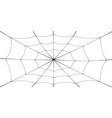 spider web cartoon black cobweb element isolated vector image