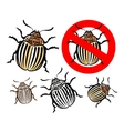 colorado potato beetle and prohibition sign vector image vector image