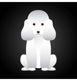 french poodle design vector image vector image