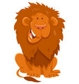 funny lion cartoon wild animal character vector image