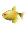 small fish icon image vector image vector image