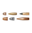 copper bullets set ammo types cartridges icons vector image
