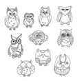 Doodle owls set bird collection vector image vector image