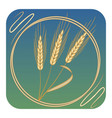golden ears of corn stylized in a circular frame vector image