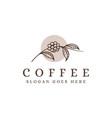lineart coffee branch logo coffee bean logo vector image