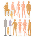 mannequin dummy model for fashion dress and vector image vector image