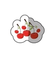 middle shadow sticker colorful with cherrys vector image vector image