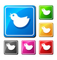 trendy round blue twitter bird social media web vector image