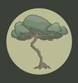 oak symbol vector image vector image