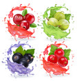 realistic berries in juices splash set vector image vector image