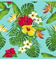 tropic bloe vector image vector image