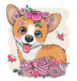 cartoon corgi with flowerson a white background vector image vector image