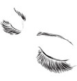 closed female eyes drawing long eyelashes vector image vector image