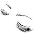 closed female eyes drawing long eyelashes vector image vector image