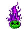 colored pumpkin on fire design vector image