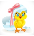 Cute baby chick just hatched from an Easter egg vector image vector image